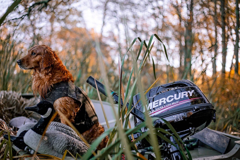 Mercury Marine - FourStroke 2.5, 3.5, 4, 5 en 6