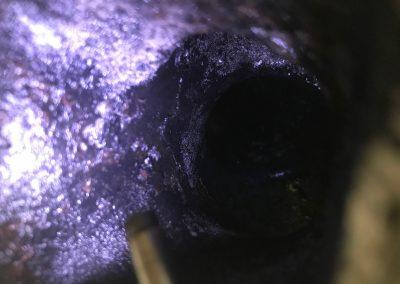 Endoscopisch Onderzoek Binnenboordmotoren Buitenboordmotoren 3
